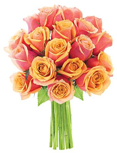 Mandarin Orange Roses (Dozen and a Half) - Without Vase