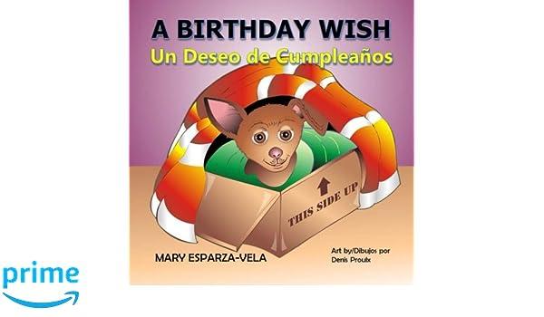 A Birthday Wish/Un Deseo de Cumpleanos: Mary Esparza- Vela ...