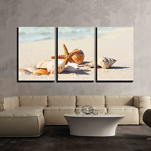 Sea Shells with Sand as Background x3 Panels