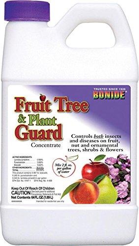 Bonide 1/2Gal Obst und Pflanze Garten Konzentrat
