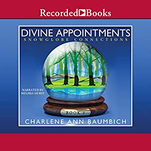 Divine Appointments Audiobook