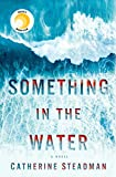 Book cover from Something in the Water: A Novel by Catherine Steadman