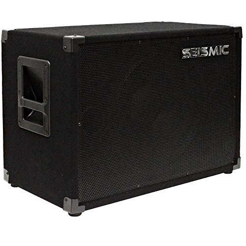 115 Bass Cabinet - Seismic Audio - 15