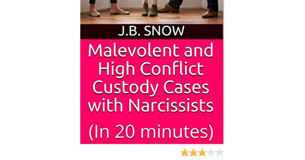 Amazon com: Malevolent and High Conflict Custody Cases with