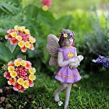 Cheap Miniature Garden Fairy Willow
