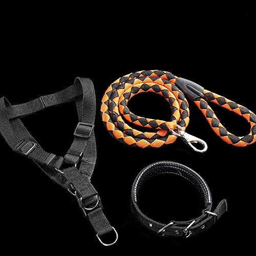 Black orange three-piece S Black orange three-piece S YSDTLX Dog Chain Dog Leash Chest Strap With Hyena Rope In Large Dog Pet Supplies Black orange Three-Piece Suit S