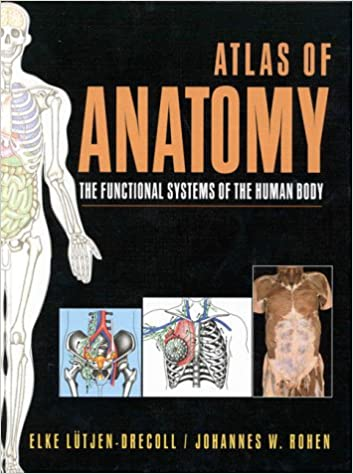 Atlas Of Anatomy The Functional Systems Of The Human Body