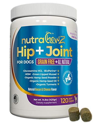 nutrachewz Grain Free Hip & Joint Supplement for Dogs with Organic Hemp Oil, Glucosamine Chondroitin, Turmeric, MSM, Green Lipped Mussel for Arthritis, Pain Relief, Mobility All Natural - 120 Chews