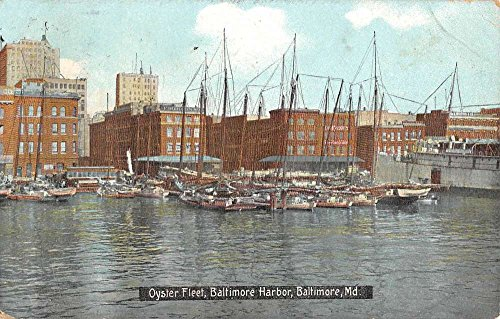 Baltimore Maryland Harbor Oyster Fleet Waterfront Antique Postcard K87483