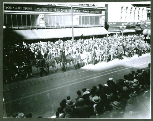 Camel Zebra (Zebras & camels Hagenbeck & Wallace Circus Parade 1934)
