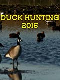 Duck hunting 2016