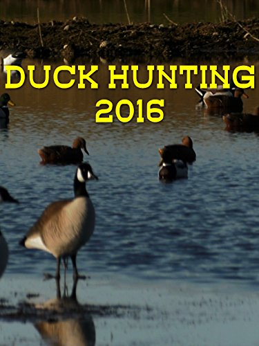 (Duck hunting 2016)