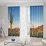 Saguaro Cactus Decor Decor Curtains,Sun Goes Down in Desert Prickly pear Cactus Southwest Texas National Park,Window Drapes 2 Panel Set, Living Room Bedroom,104 W 63 L,Orange Blue Green