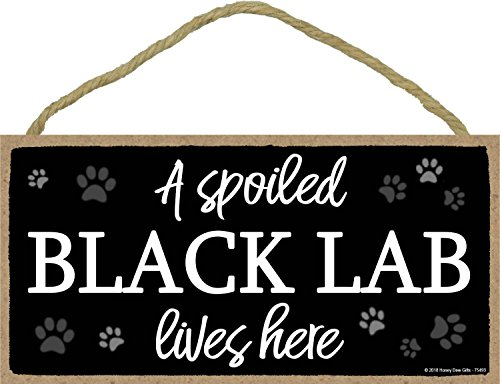 - A Spoiled Black Lab Lives Here - 5 x 10 inch Hanging Black Lab Decor, Wall Art, Decorative Wood Sign Home Decor, Black Lab Gifts