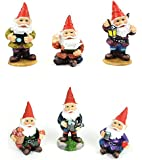 Mini Gnomes Garden Fairy Set of 6