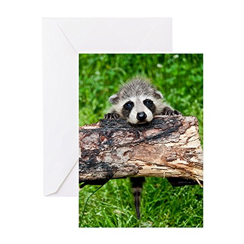 CafePress - Hang In There - Greeting Card, Note Card, Birthday Card, Blank Inside Matte