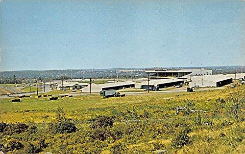 Monticello Raceway Harness Racing Monticello, New York, Postcard