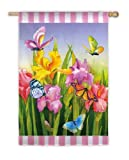 Dancing Butterfly Flag (Regular Size) Review