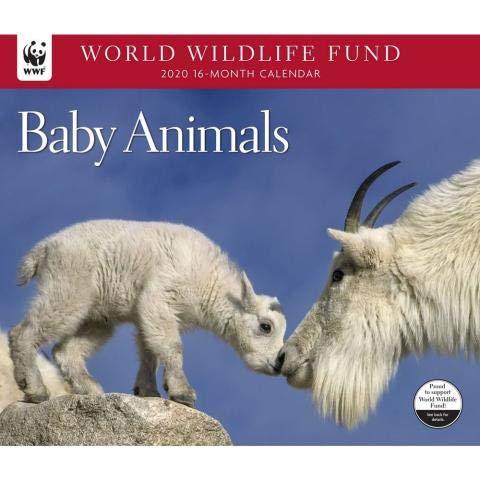 2020 WORLD WILDLIFE FUND Baby Animals Wall Calendar