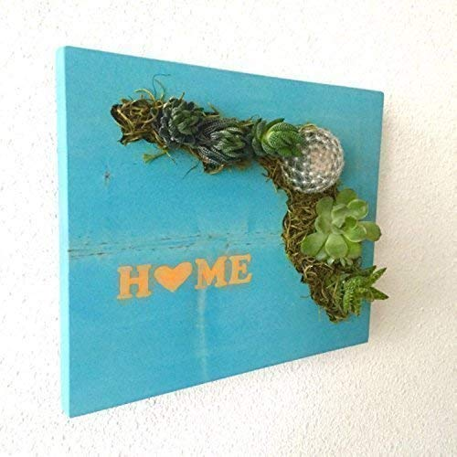 CUSTOM COLOR: Home State Succulent + Cacti Vertical Garden || Living Wall || Wall Planter || Hanging Planter