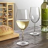 Blanc Plastic White Wine Stems   13-1/2-ounce   set