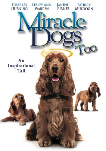 Miracle Dogs Too in USA