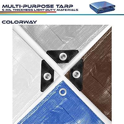Windscreen4less 6' x 8' General Multiple Purpose 5 Mil Waterproof Blue Poly Tarp