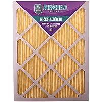 AirShield 30001-202-0020 Micro-Allergen MERV 11 Fine Furnace Filters (2 Pack), 14 x 25 x 1