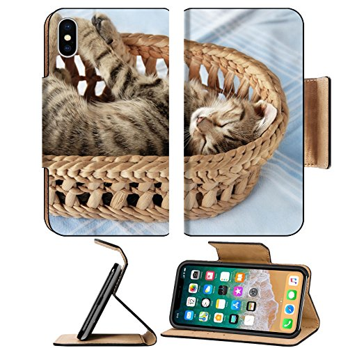 Liili Premium Apple iPhone X Flip Pu Leather Wallet Case adorable baby cat sleeping in basket over light blue background Photo 10333756 Simple Snap Carrying