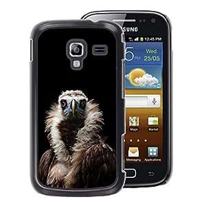A-type Arte & diseño plástico duro Fundas Cover Cubre Hard Case Cover para Samsung Galaxy Ace 2 (Condor Bird Black Vulture Nature Feather)