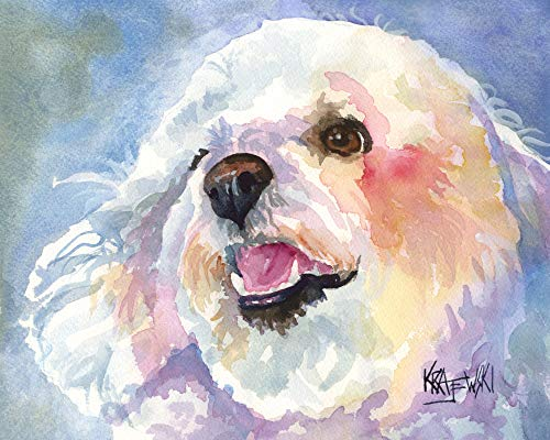 Watercolor Original Painting - Bichon Frise Art Print | Bichon Frise Gifts | From Original Watercolor Painting by Ron Krajewski | Hand Signed in 8x10