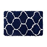 Vista Living Alfred Chunky Shag 27×45 Accent Rug, White/Indigo Review