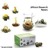 12 Blooming Flowering Green Tea Gift Box (Variety Flavors)