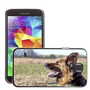 Super Stella Slim PC Hard Case Cover Skin Armor Shell Protection // M00149660 Dog Animal Fur Coat German Shepherd // Samsung Galaxy S5 S V SV i9600 (Not Fits S5 ACTIVE)