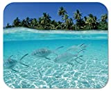 island mouse pad - Fish Flock Sea Shallow Water Island Palm Trees Customized Rectangle Mousepad, Gaming Mouse Pad Mouse Mat