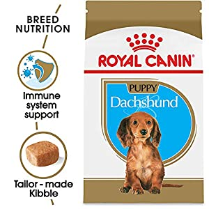Royal Canin Breed Health Nutrition Dachshund Puppy Dry Dog Food 32