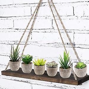 Yoodelife Artificial Faux Succulents Decorative Fake Cactus Aloe Cacti Plants Gray Pots, Realistic Looking Assortments 5