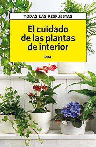 El cuidado de las plantas de interior (PRACTICA)