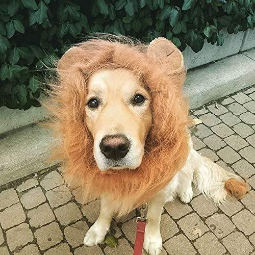 (OMG Adorables - Lion Mane for Dog - Halloween)