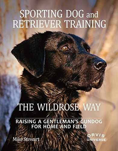 Sporting Dog and Retriever Training: The Wildrose Way: Raising a Gentleman's Gundog for Home and Field (Best Dog Training Methods Reviews)