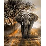 Blxecky 5D DIY Diamond Painting ,By Number Kits Crafts & Sewing Cross Stitch,Wall stickers for living room,Elephant-35X43CM/14X17inch