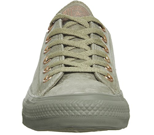 Taylor Beige Ox Trainers Star Core All Khaki Gold 205 Khaki Adult Converse Unisex Chuck Blush CqqpF
