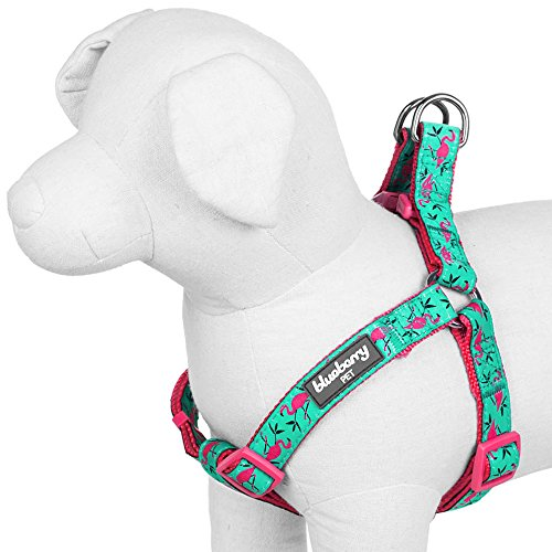 Blueberry-Pet-Step-in-Pink-Flamingo-on-Light-Emerald-Dog-Harness-Chest-Girth-165-215-Small-Adjustable-Harnesses-for-Dogs