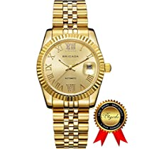 BRIGADA Luxury Gold Waterproof Automatic Watches for Men, Swiss Brand Nice Mechanical Mens Watches