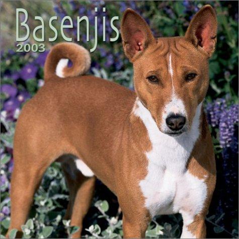 Basenjis: 2003
