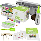Paint & Plant Flower Growing Kit - Kids Gardening