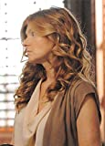 Connie Britton trading card American Horror Story 2014 #12 Vivien Harmon