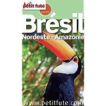 Brésil Nordeste - Amazonie 2016/2017 Petit Futé (Country Guide)