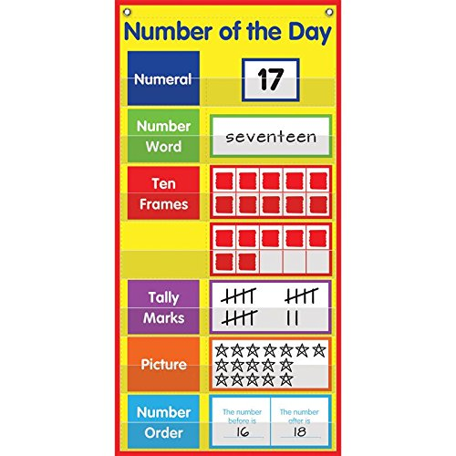 Really Good Stuff 161724 Number of The Day Space-Saver Pocket Chart, Assorted ()