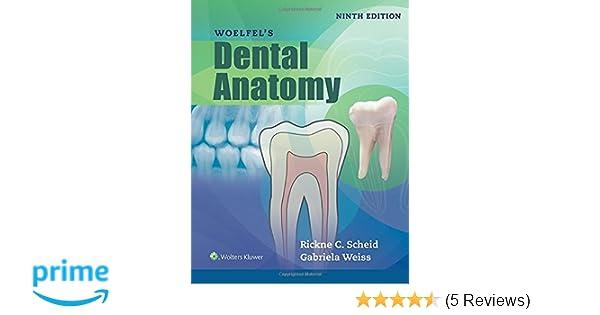 Woelfels Dental Anatomy: 9781496320223: Medicine & Health Science ...
